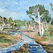 Todd River Art Print