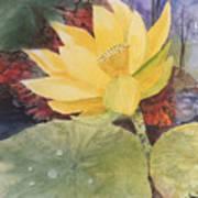 Tohopekaliga Lotus 2 Art Print