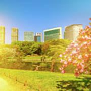 Tokyo Sakura Spring Art Print