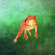 Tomato Frog Art Print