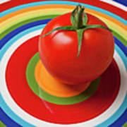 Tomato On Plate With Circles Art Print