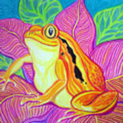 Tomatoe Frog Art Print