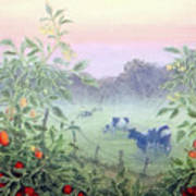 Tomatoes In The Mist Art Print