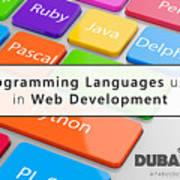 Top 5 Web Development Languages Every Web Developer Needs To Know  Art Print
