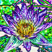 Top View Of A Beautiful Purple Lotus Art Print