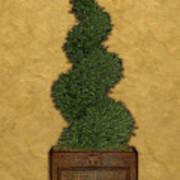 Topiary 2 Art Print