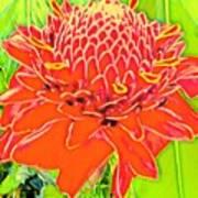 Torch Ginger Aloha Art Print