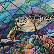 Tortuga Carey Art Print