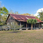 Tosohatchee Cattle Ranch In Central Florida Art Print
