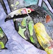 Toucan Bird Tropical Painting Fine Modern Art Print Art Print