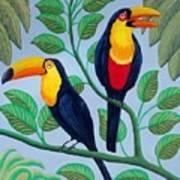 Toucans Art Print