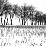 Touch Of Winter Blk N Wht Art Print