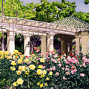 Tournament Of Roses Art Print
