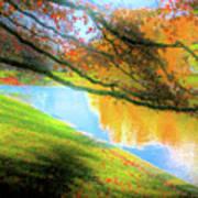 Town Pond Art Print