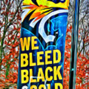 Towson Tigers Black And Gold Art Print