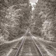 Tracks Bw Art Print