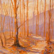 Trail Eight Art Print