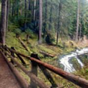 Trail Over Sol Duc Falls Bridge In Olympic National Park Art Print