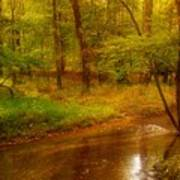 Tranquility Stream - Allaire State Park Art Print
