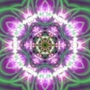 Transition Flower 6 Beats 3 Art Print