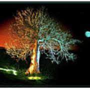 Tree And Moon Art Print