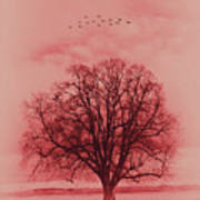Tree Art 01 Art Print
