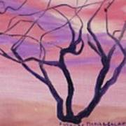 Tree At Sunset Art Print