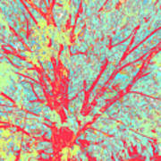 Tree Branches 8 Art Print