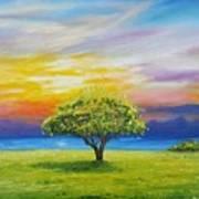 Tree By The Beach Art Print