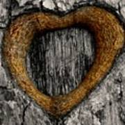 Tree Graffiti Heart Art Print
