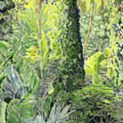 Tree In Garden Art Print