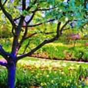 Tree In Spring Art Print