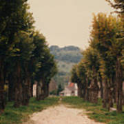 Tree Lined Pathway In Lyon France Art Print