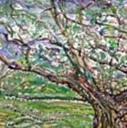 Tree, Loom Of Light And Life Art Print