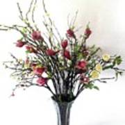 Tree Magnolias Art Print