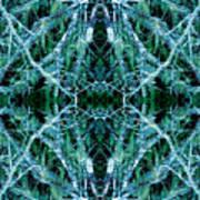 Tree Moss Mandala Art Print