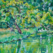 Tree near a pond in Lednice castle park Art Print