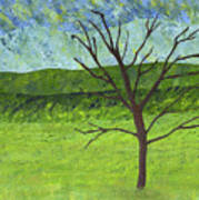 Tree No Leaves Art Print
