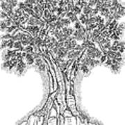 Tree Of Life 1 Art Print