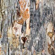 Tree Of Love 2 Art Print