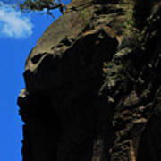 Tree On A Cliff At Battleship Rock New Mexico - 003 Art Print
