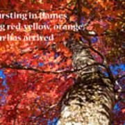 Tree On Fire - Haiku Art Print