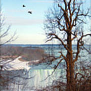Tree Overlooking The Falls Art Print