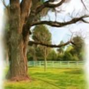 Tree Series 1323 Art Print