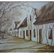 Tree Shadows Print by Barbi Vandewalle