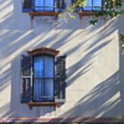 Tree Shadows On Savannah House Art Print