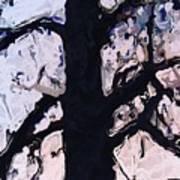 #tree Silhouette Art Print