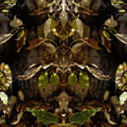 Tree Spirits Art Print