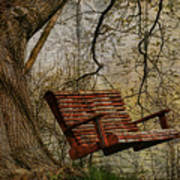 Tree Swing By The Lake Art Print