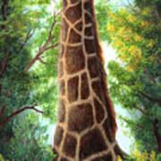 Tree Top Browser Art Print